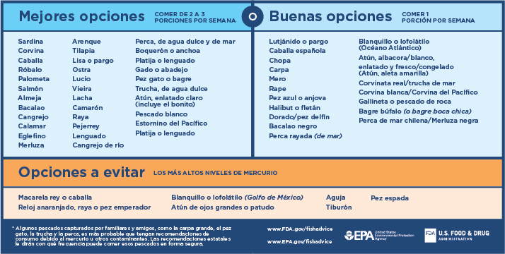 Advice About Eating Fish Chart (en Español)