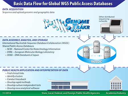 Basic Data Flow for Global WGS Public Access Databases