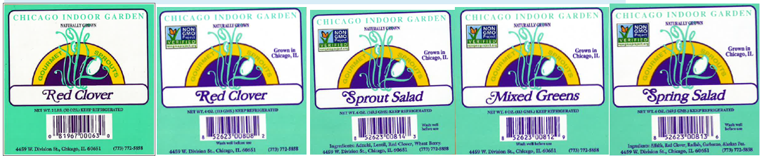 Chicago Clover Sprouts