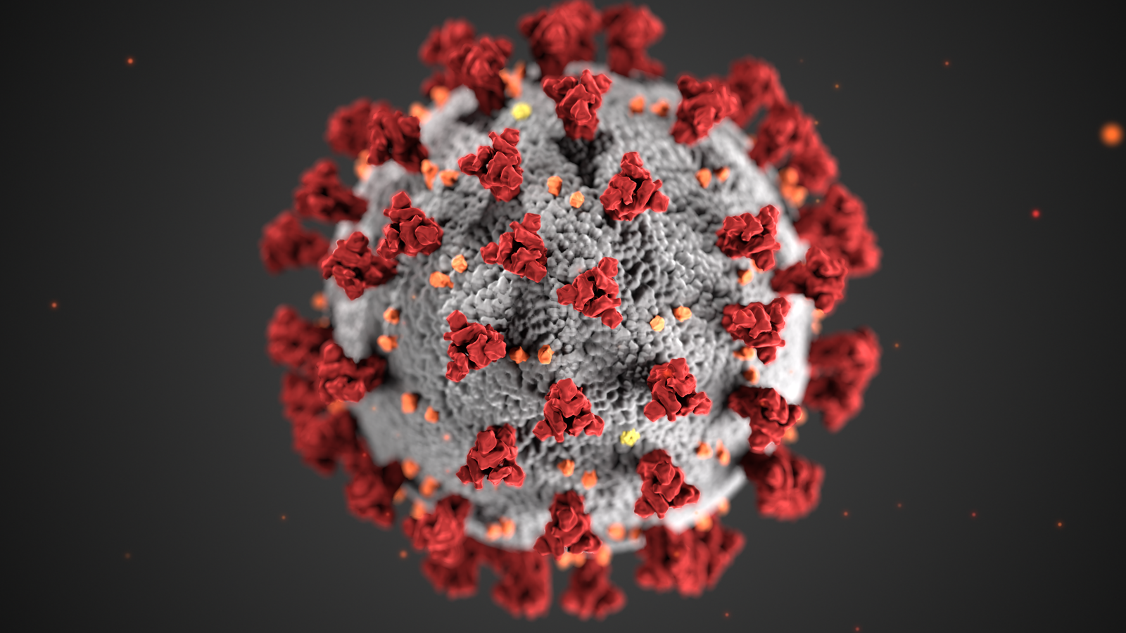 This illustration, created at the Centers for Disease Control and Prevention (CDC), reveals ultrastructural morphology exhibited by coronaviruses. Note the spikes that adorn the outer surface of the virus, which impart the look of a corona surrounding the virion, when viewed electron microscopically. A novel coronavirus, named Severe Acute Respiratory Syndrome Coronavirus 2 (SARS-CoV-2), was identified as the cause of an outbreak of respiratory illness named coronavirus disease 2019 (COVID-19).