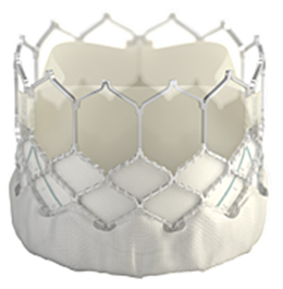 Edwards SAPIEN 3 Transcatheter Heart Valve System with Edwards Commander  Delivery System