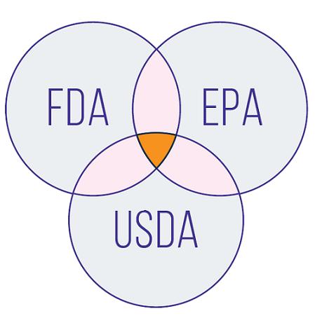 FDA, USDA, and EPA Work Together to Regulate Most GMOs