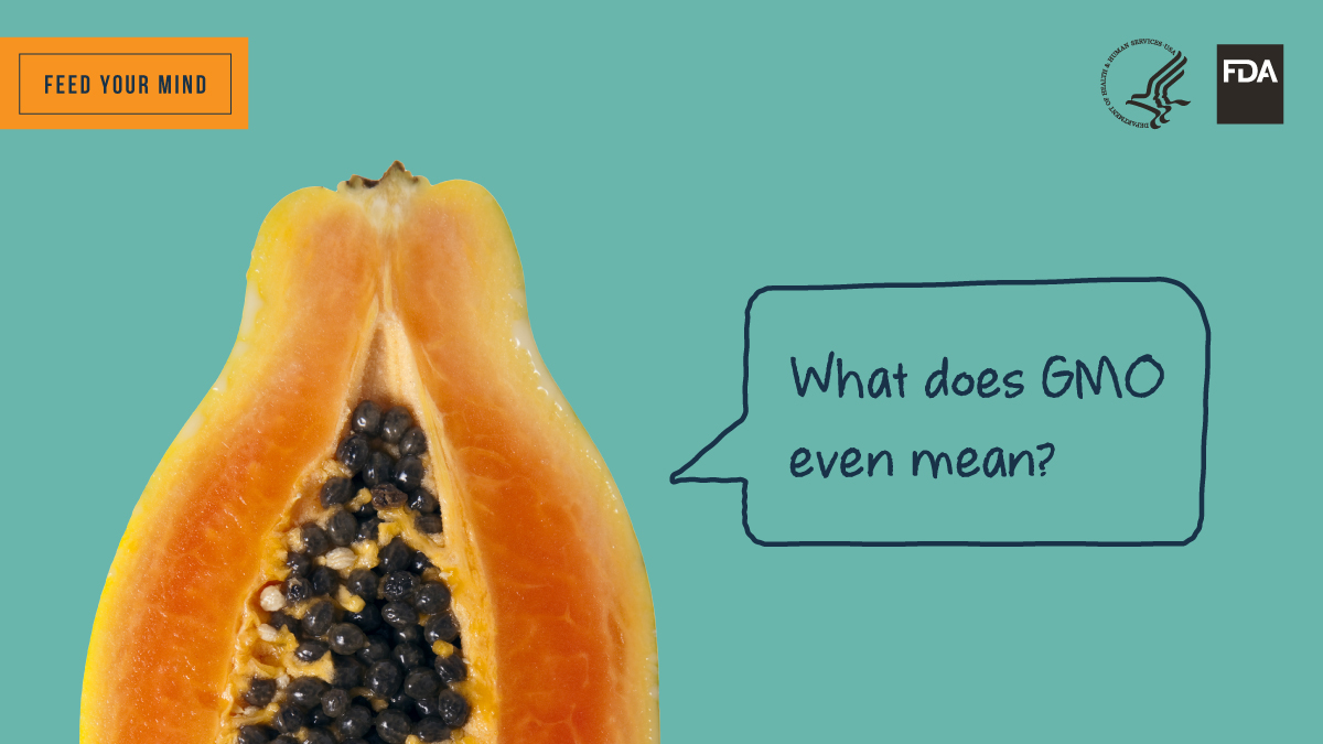 Feed Your Mind Twitter Image - Papaya