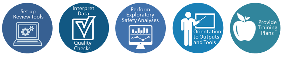 Set up review tools , Intepret data, Quality checks , Perform exploratory safety analyses, Orientation to outputs and tools, Provide training plans