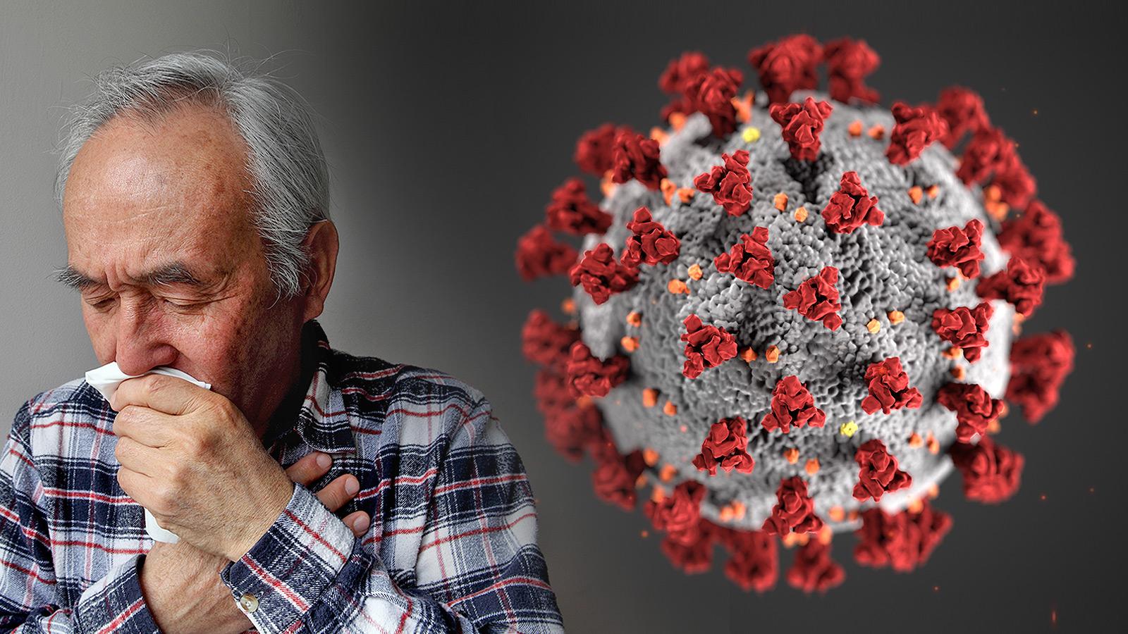 Coronavirus Disease 2019 Covid 19 Fda