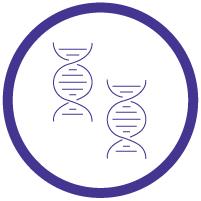 Making a GMO Plant, Step by Step - Copy