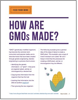 How Are GMOs Made?