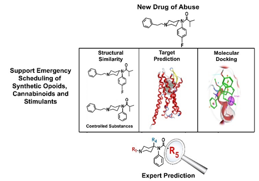 Modeling to Inform Scheduling of Novel Substances of Abuse Potential