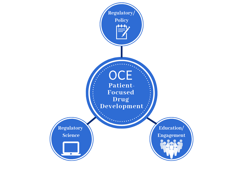 Image displays a large circle in the center representing the OCE Patient-Focused Drug Development Program connected with lines to three smaller circles representing Regulatory Policy, Regulatory Science, and Education and Engagement