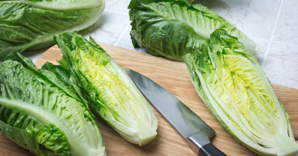 Outbreak Investigation of E  coli O157:H7 Linked to Romaine Lettuce