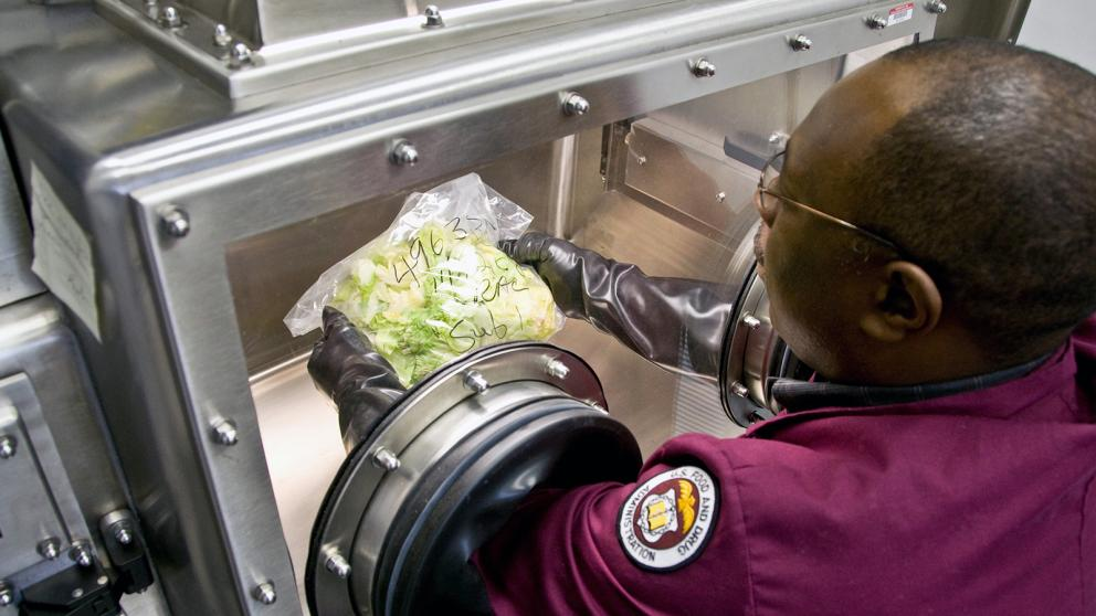 An FDA employee examines a bag of produce within a sealed environment in a lab