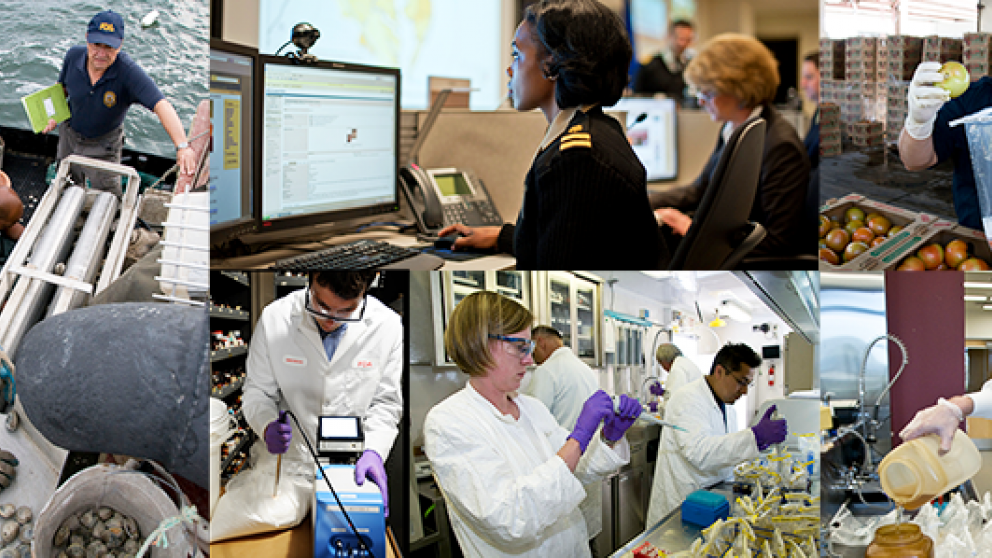 Collage of crisis management activities including safety inspectors, scientists in labs, and communication staff