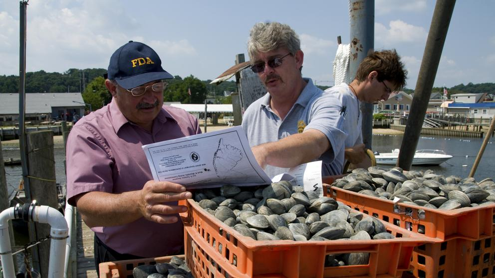 An FDA shellfish specialist (left) and a New Jersey state inspector look at a map of the waters where the clams in the foreground were harvested.