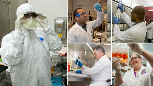 five photos showing scientists working in labs use various personal protective equipment