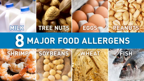 photos of 8 major food allergens: milk, tree nuts, eggs, peanuts, shrimp, soybeans, wheat, and fish