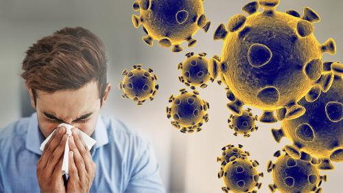 Image result for coronavirus images