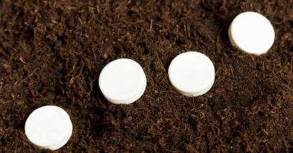 White tablets in soil