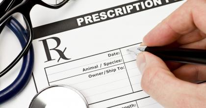 prescription form for veterinarians