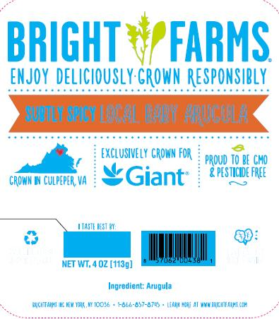 """Label, BrightFarms Local Baby Arugula for Giant"""