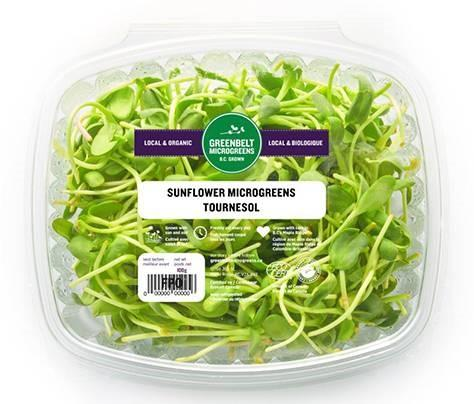 """Greenbelt Microgreens, Sunflower, 100 gm"""