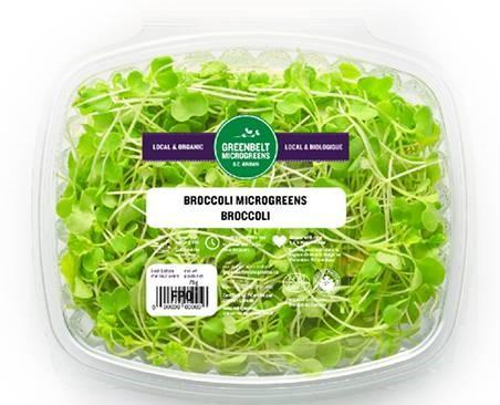 """Greenbelt Microgreens, Broccoli, 75 gm"""
