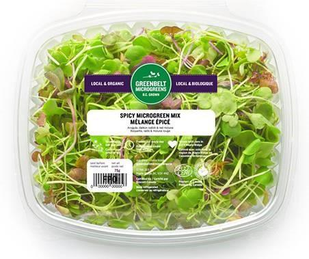 """Greenbelt Microgreens, Spicy Microgreen Mix, 75 gm"""