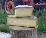 """Hamden is wild Ouleout"" by taking a few wheels from the Ouleout batch and letting the rind develop naturally, it slowly developed into its own cheese. The diversity of moulds and yeasts on the rind adds an earthy crunch to the sensory experience."""