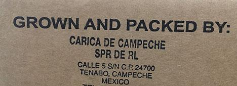Box label: Papayas Grown and Packed by Carica de Campeche