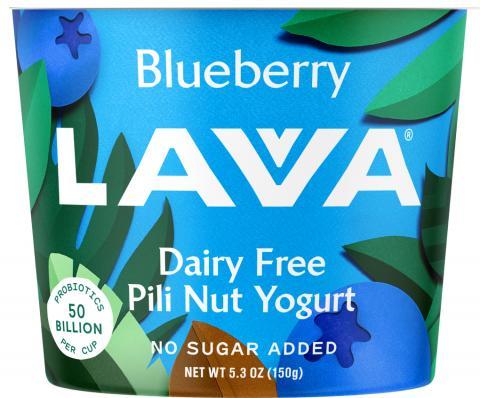 Photo – LAVVA Blueberry, Dairy Free, Pili Nut Yogurt, 5.3 oz.