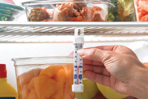 Thermometer in refrigerator