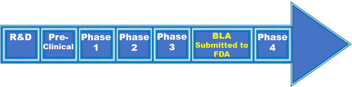 Illustration of the Vaccine Approval Process.  Includes R&D, Pre-Clinical, Phase 1, Phase2, Phase 3, BLA Submitted to FDA, and Phase 4