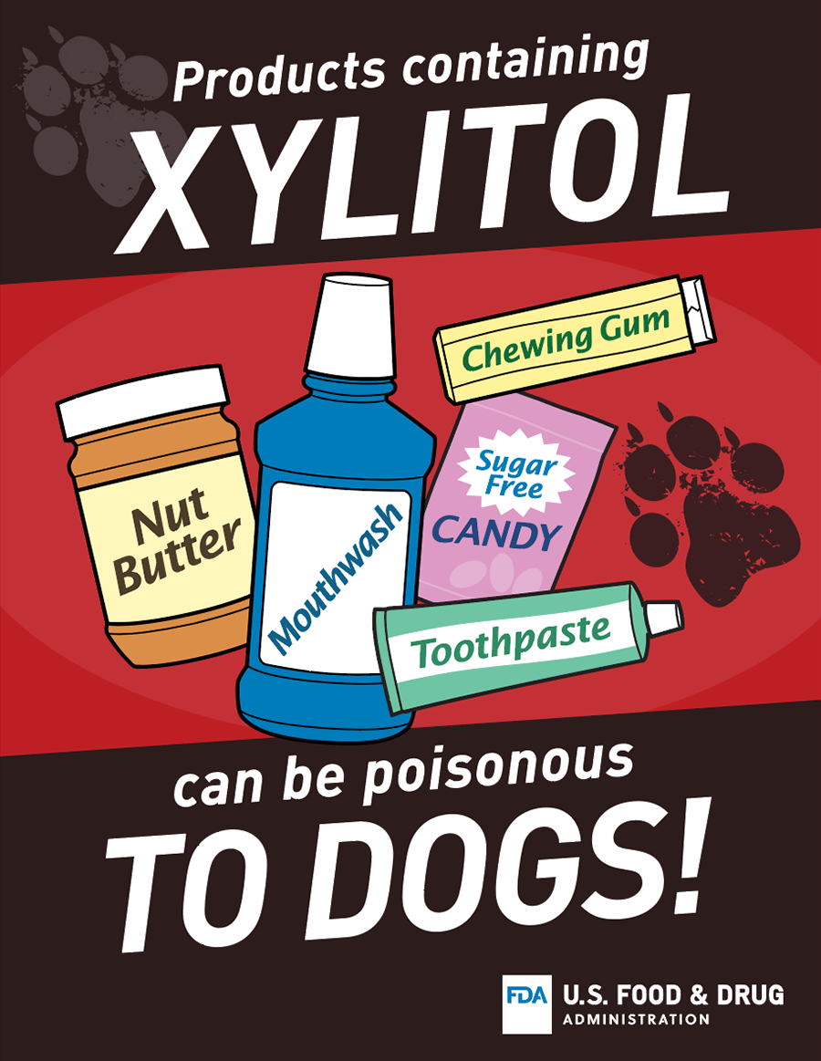 Graphic with illustrations of nut butter, mouthwash, chewing gum, candy and toothpaste, and text that reads: Products containing Xylitol can be poisonous to dogs!