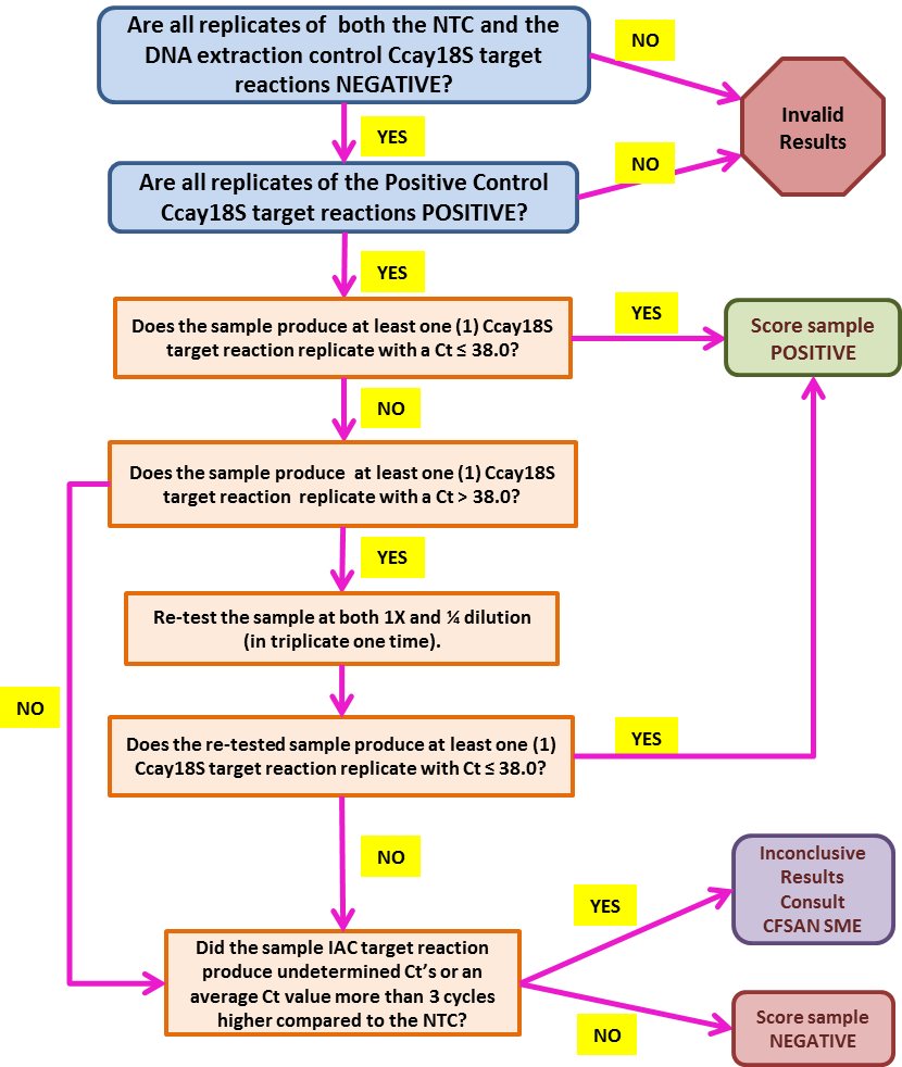 BAM 19b  qPCR Data Analysis Flowchart: