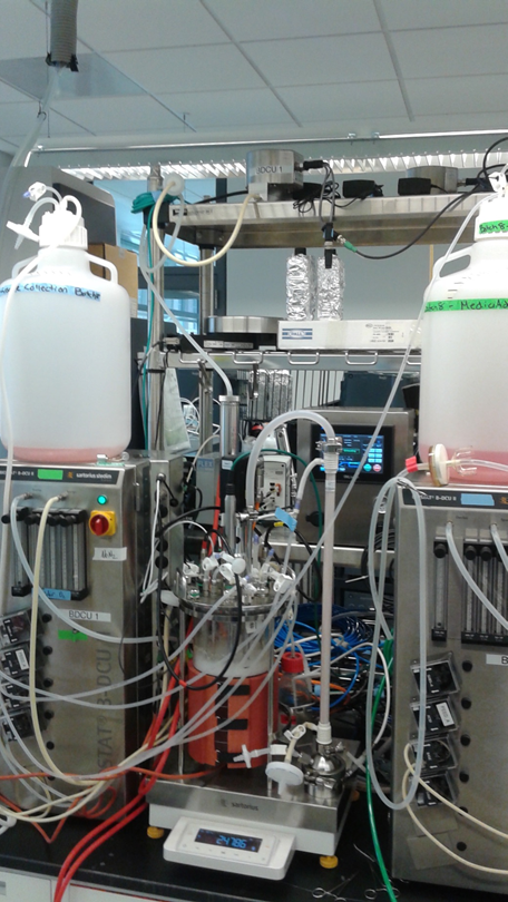 A bench-scale continuous process for biotechnology products. This model perfusion bioreactor was developed with MIT students hosted by the Office of Pharmaceutical Quality in 2016.