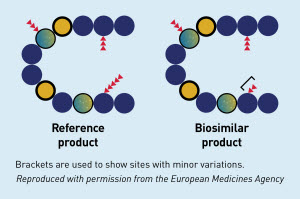 Minor differences between the references product and the proposed biosimilar product in clinically inactive components are acceptable.