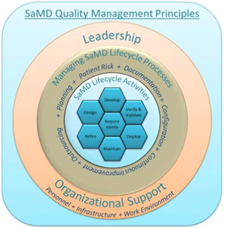 This image represents the quality management principles of software as a medical device (SaMD), such as leadership and organization support, processes and activities.