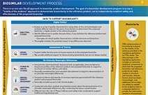 Biosimilar Development Process