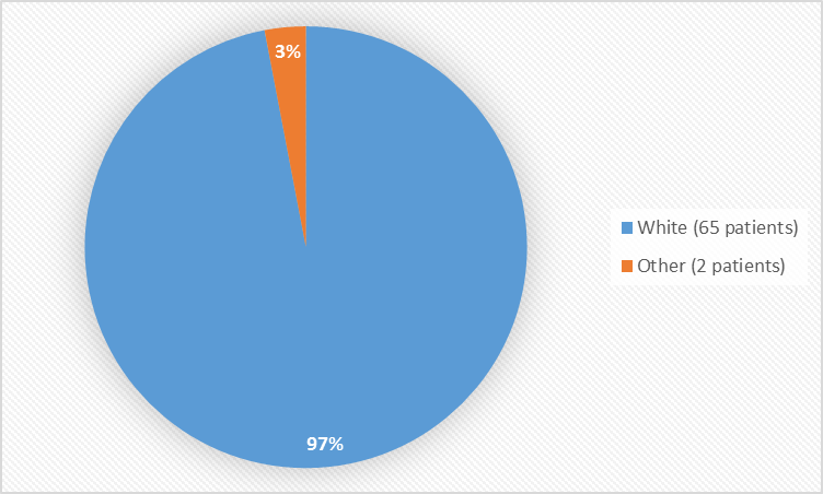 Pie chart summarizing the percentage of patients by race enrolled in the clinical trial. In total, 65 White (97%) and 2 Other patients (3%) participated in the clinical trial.