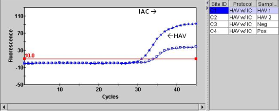 Figure 1B: Display of the graphical view of the ICA (internal amplification