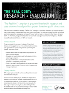 The Real Cost Research and Evaluation PDF Handout Thumbnail