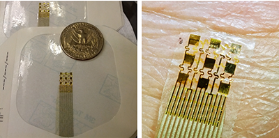 EEG electrodes used for brain injury biomarker investigation in FDA's Neural Interface Laboratory. These flexible sensors have gold recording electrodes and conform to the skin (photo: Stanley Huang)