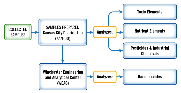The samples that have been collected go to FDA's Kansas City District lab, where all of the samples are prepared for analysis.  Portions of the samples of the various foods are then analyzed on-site for toxic elements, nutrients, pesticides, and industrial chemicals.  Portions also go to FDA's Winchester Engineering and Analytical Center, where they are analyzed for radionuclides.
