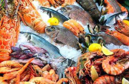 Resources on Seafood