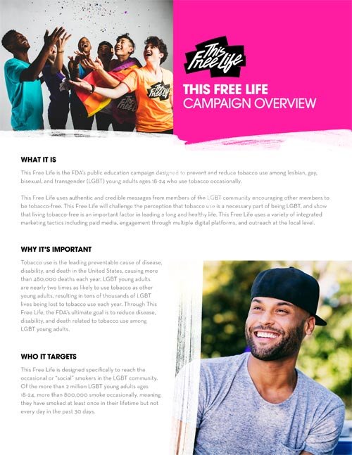 This Free Life Overview Factsheet thumbnail