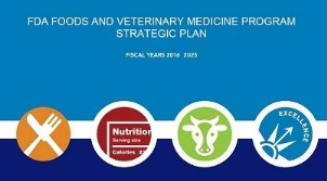 FVM Strategic Plan