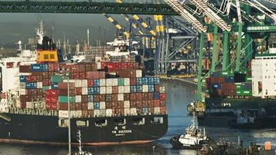 Image for Import Basics